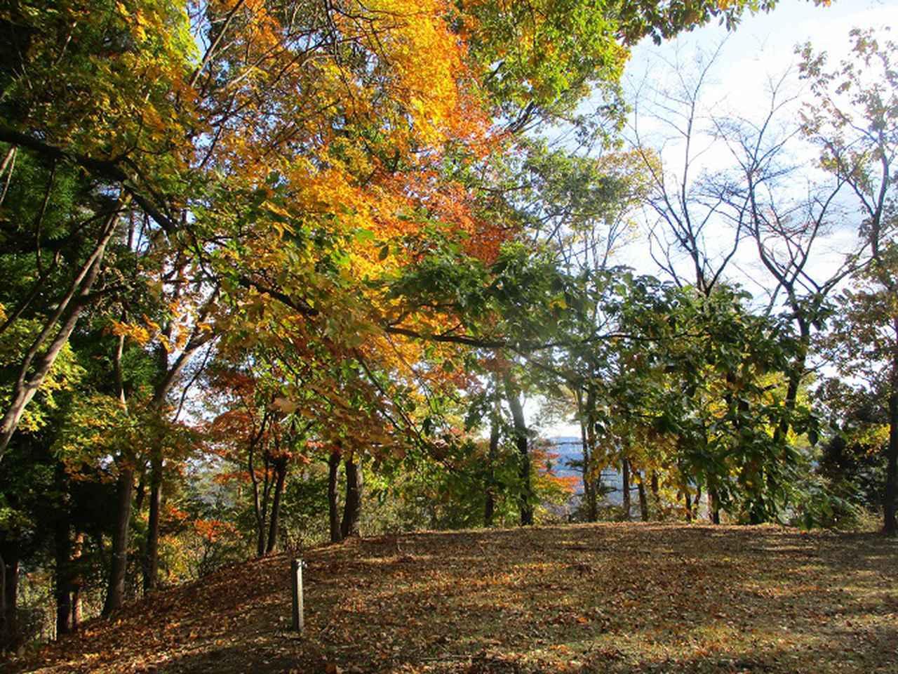 画像10: 12月の山旅会 「鬼石桜山」 ツアーの下見にいってきました!