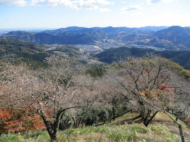 画像9: 12月の山旅会 「鬼石桜山」 ツアーの下見にいってきました!