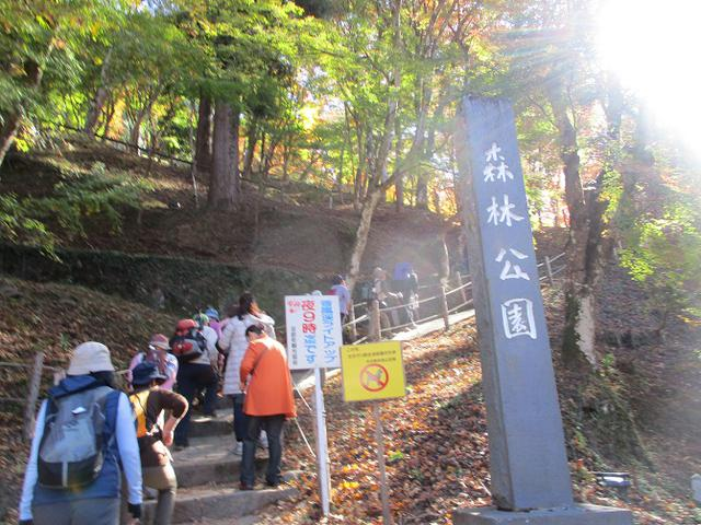 画像4: 11月21日から山旅会 「香嵐渓と鳳来寺」 ツアーに行ってきました!