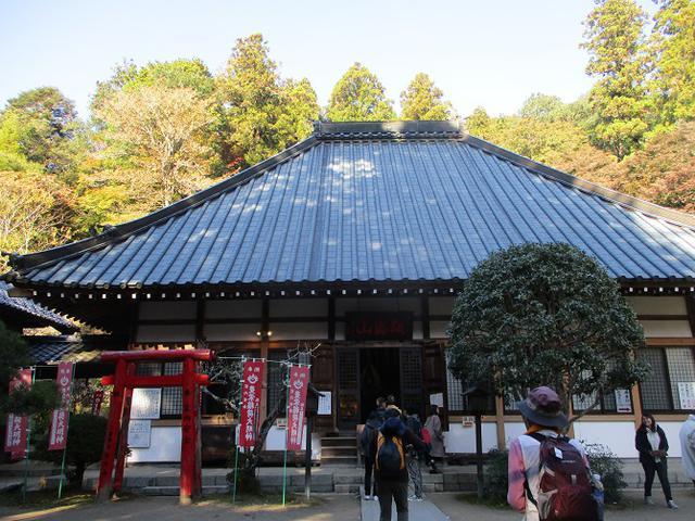 画像5: 11月21日から山旅会 「香嵐渓と鳳来寺山」 ツアーに行ってきました!