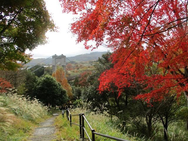 画像11: 12月の山旅会 「三ノ塔尾根」 ツアーの下見にいってきました!