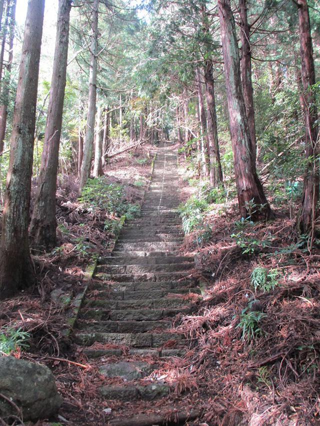 画像7: 12月の山旅会 「鐘ヶ岳」 の下見に行ってきました!