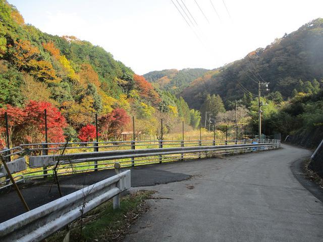画像13: 12月の山旅会 「鐘ヶ岳」 の下見に行ってきました!
