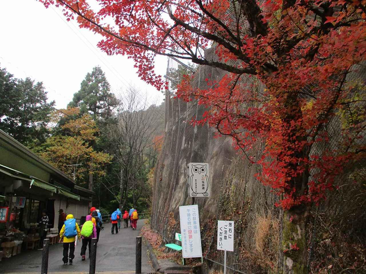 画像1: 11月21~22日に山旅会 「香嵐渓と鳳来寺山」 ツアーに行ってきました!