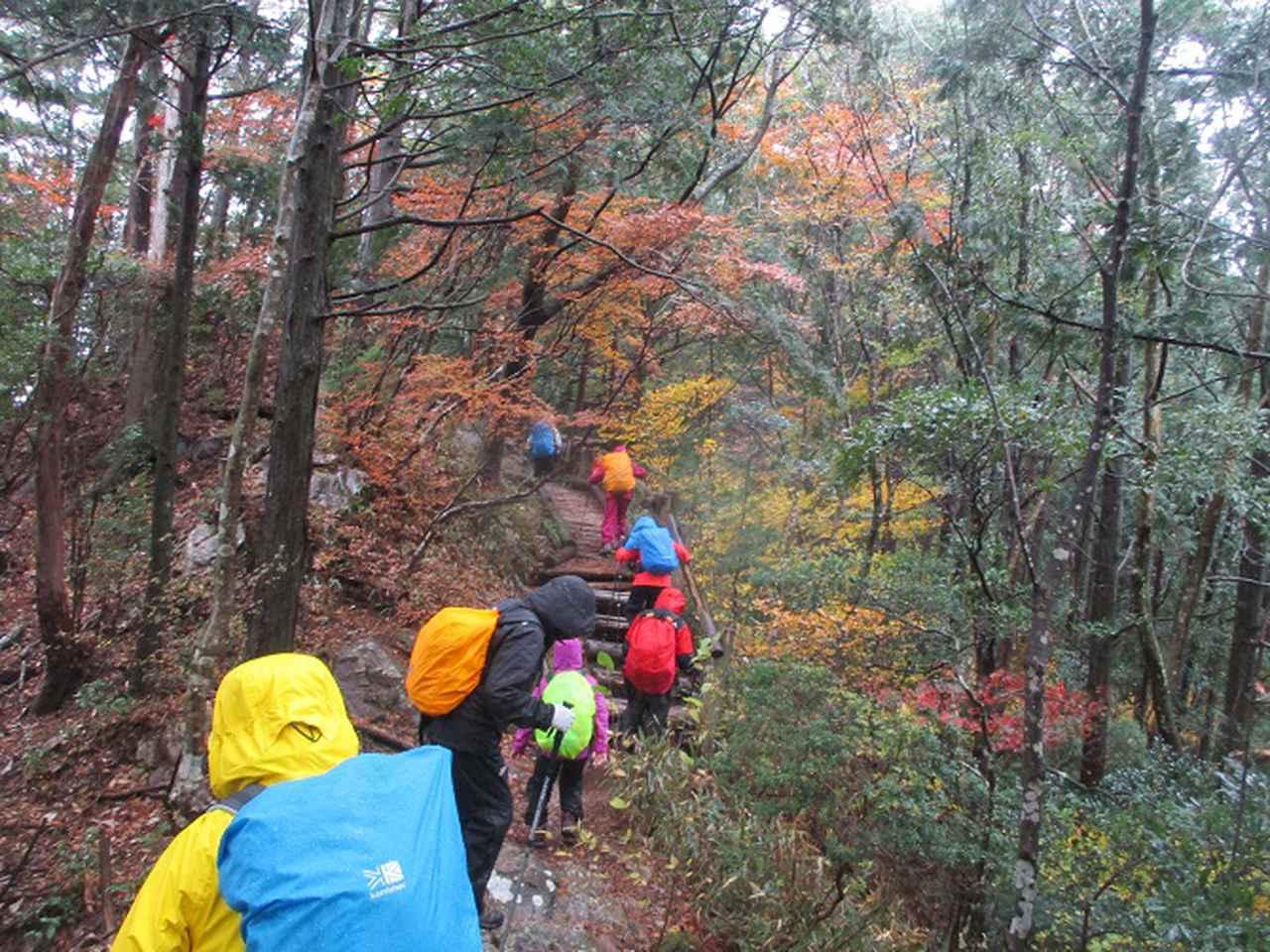 画像6: 11月21~22日に山旅会 「香嵐渓と鳳来寺山」 ツアーに行ってきました!