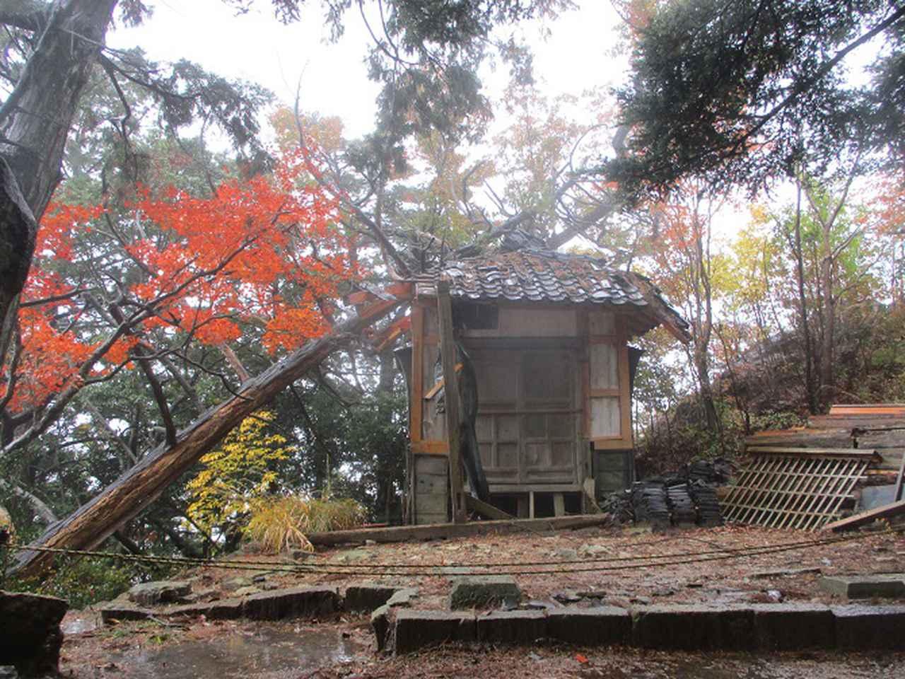 画像8: 11月21~22日に山旅会 「香嵐渓と鳳来寺山」 ツアーに行ってきました!