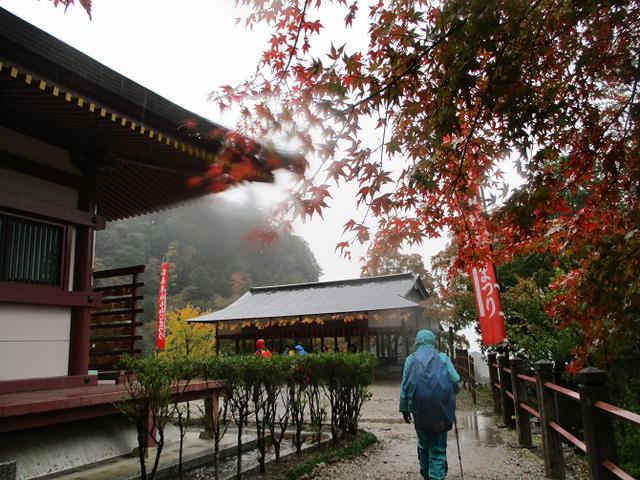 画像11: 11月21~22日に山旅会 「香嵐渓と鳳来寺山」 ツアーに行ってきました!