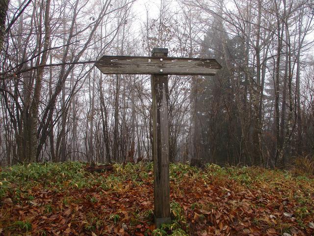 画像7: 【山旅会・登山ガイドこだわりツアー】岡田ガイドからの便り・槙寄山ツアーに行ってきました!
