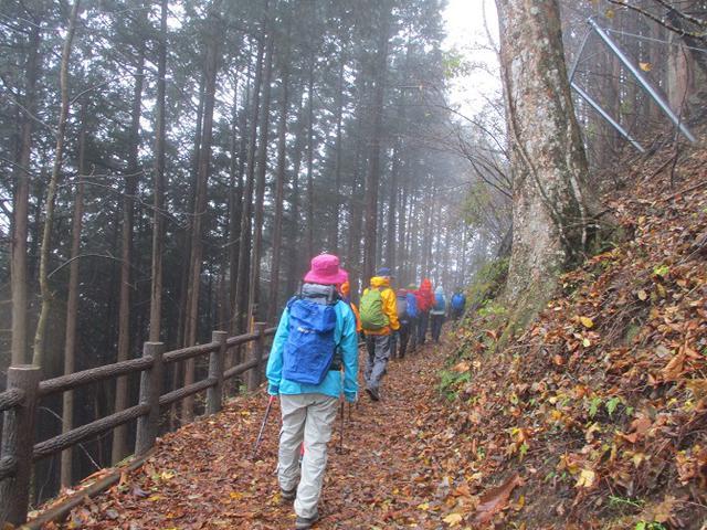 画像2: 【山旅会・登山ガイドこだわりツアー】岡田ガイドからの便り・槙寄山ツアーに行ってきました!