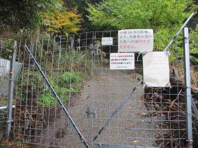 画像2: 11月27日に山旅会 矢倉岳 ツアーに行ってきました!