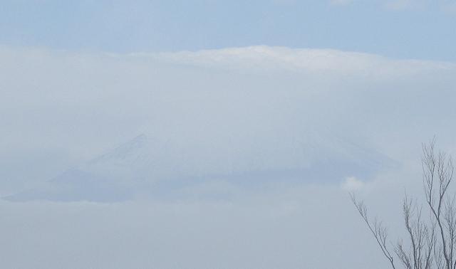 画像9: 11月27日に山旅会 矢倉岳 ツアーに行ってきました!