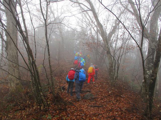 画像5: 【山旅会・登山ガイドこだわりツアー】岡田ガイドからの便り・槙寄山ツアーに行ってきました!