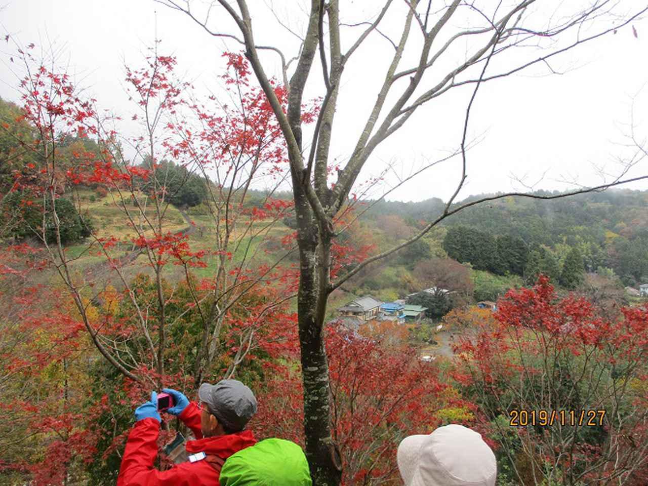 画像10: 11月27日に山旅会 矢倉岳 ツアーに行ってきました!