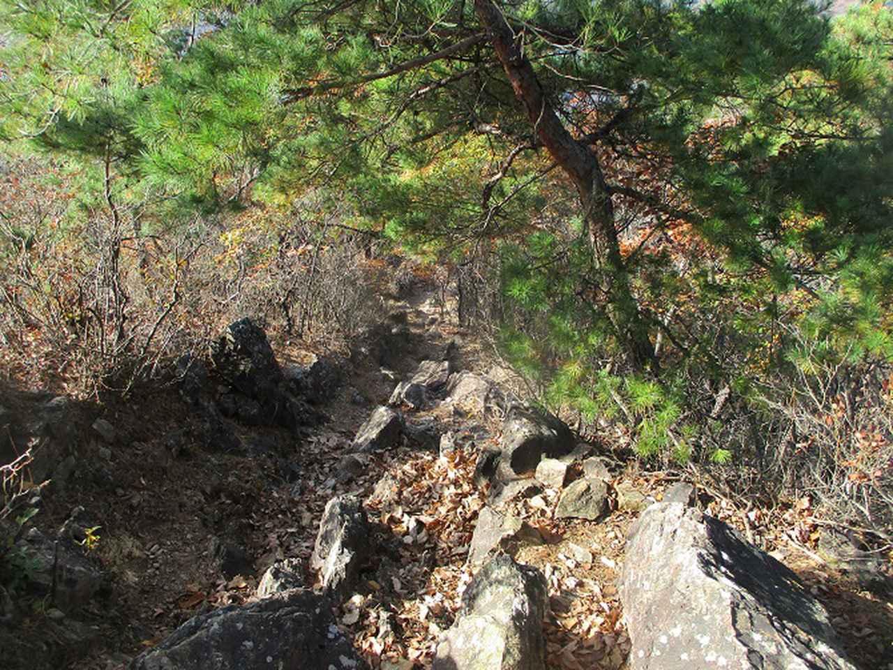 画像9: 12月の山旅会 「深高山から石尊山」 ツアーの下見に行ってきました!