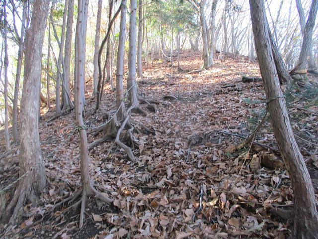 画像3: 12月の山旅会 「深高山から石尊山」 ツアーの下見に行ってきました!