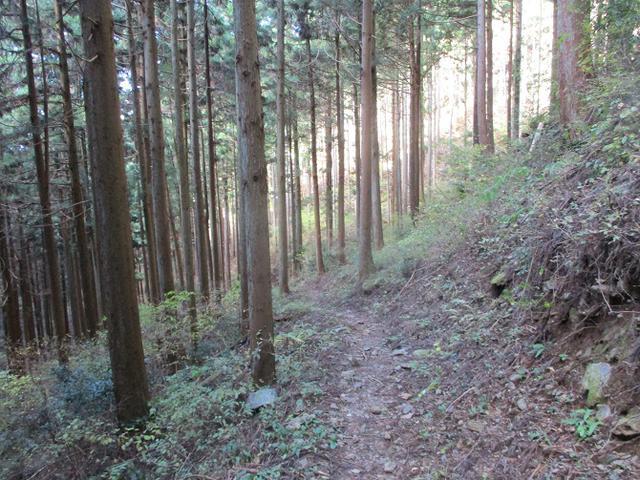 画像11: 12月の山旅会 生藤山 ツアーの下見に行ってきました!