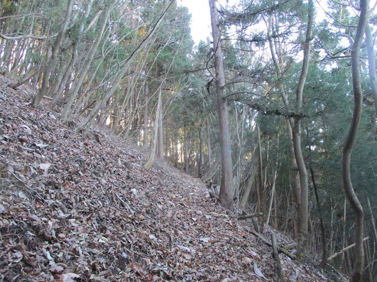 画像4: 12月の山旅会 生藤山 ツアーの下見に行ってきました!