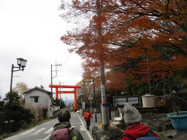 画像12: 12月6日に山旅会 筑波山 ツアーにいってきました!