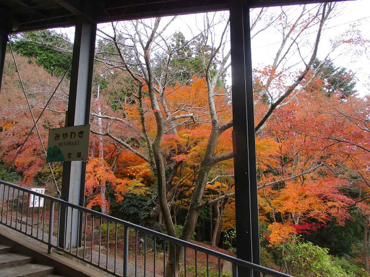 画像9: 12月6日に山旅会 筑波山 ツアーにいってきました!