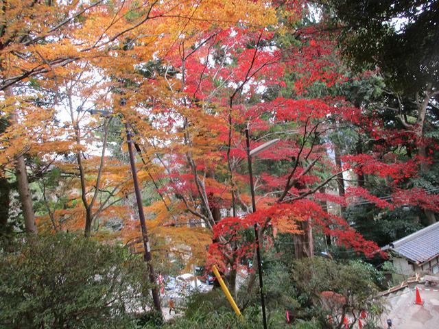 画像10: 12月6日に山旅会 筑波山 ツアーにいってきました!