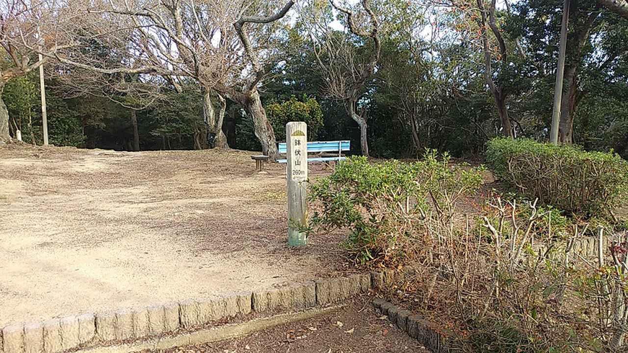 画像3: 来年冬の企画素材を探して神戸の須磨アルプスを歩いてみました!
