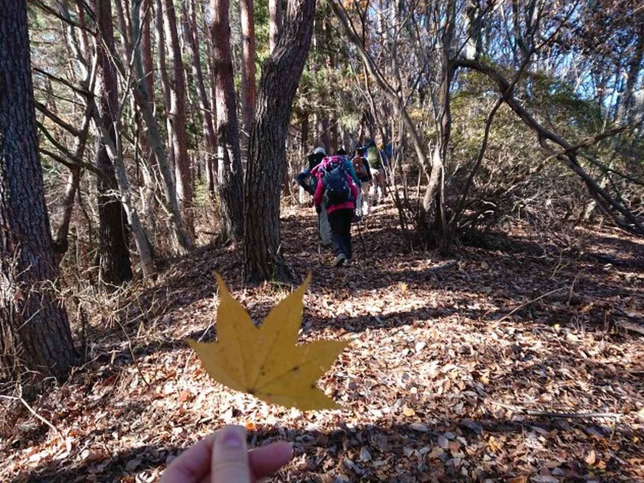 画像2: 12月8日に「ツール・ド・富士山番外編」 倉見山 へ行ってきました♪