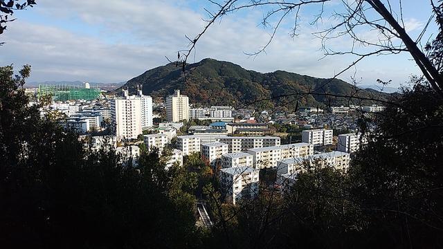画像7: 来年冬の企画素材を探して神戸の須磨アルプスを歩いてみました!