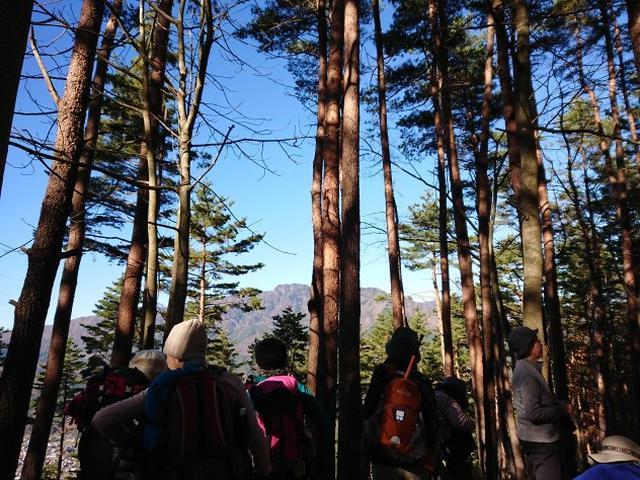 画像3: 12月8日に「ツール・ド・富士山番外編」 倉見山 へ行ってきました♪