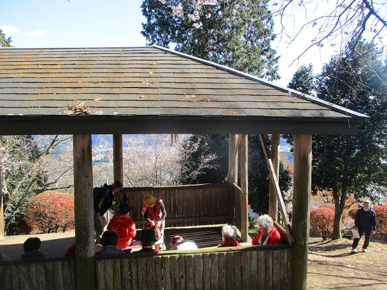 画像9: 12月4日に冬桜で有名なその名も 「桜山」 へ行って来ました♪