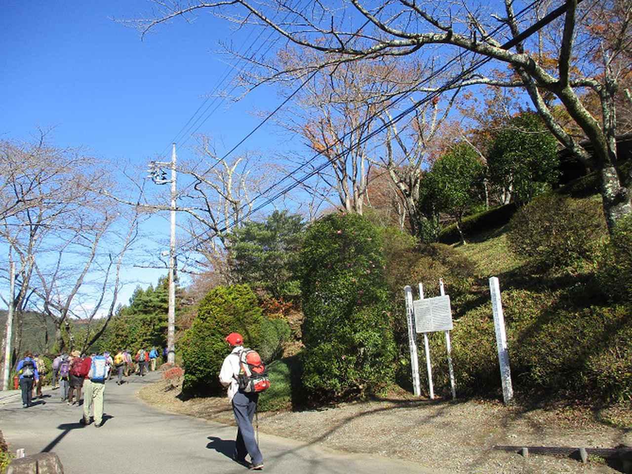 画像4: 12月4日に冬桜で有名なその名も 「桜山」 へ行って来ました♪