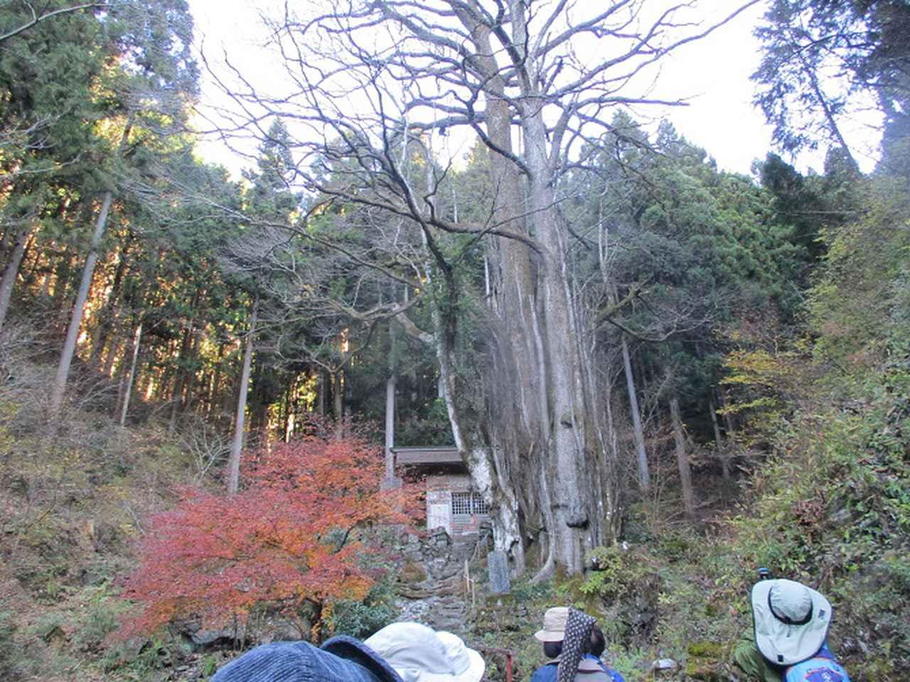 画像2: 12月12日に山旅会 生藤山 ツアーに行ってきました!