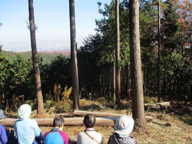 画像6: 先日12月14日に山旅会 東高尾山稜 ツアーに行ってきました!