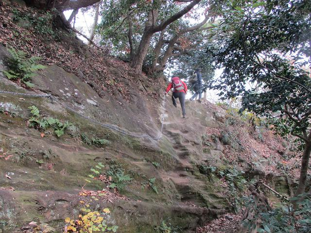 画像9: 12月21日に山旅会現地集合 「鷹取山」 ツアーに行ってきました!
