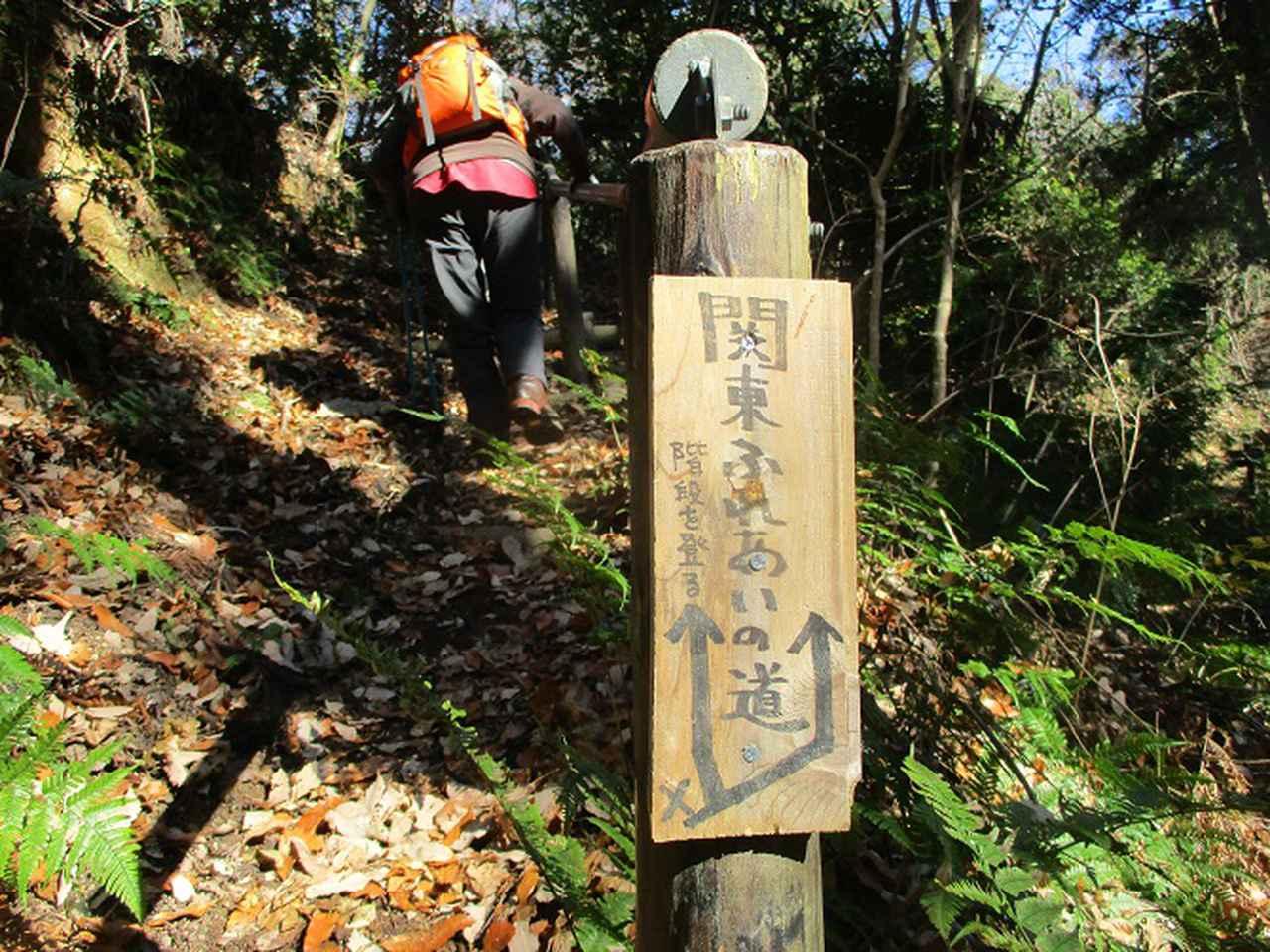 画像13: 12月20日に栃木と茨城の県境の山 「仏頂山から高峰」 へ行って来ました♪