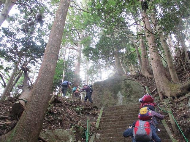 画像2: 12月13日に岡田ガイドのコースで 鐘ヶ岳 ツアーに行ってきました!
