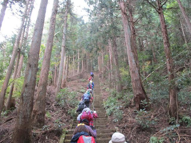 画像1: 12月13日に岡田ガイドのコースで 鐘ヶ岳 ツアーに行ってきました!