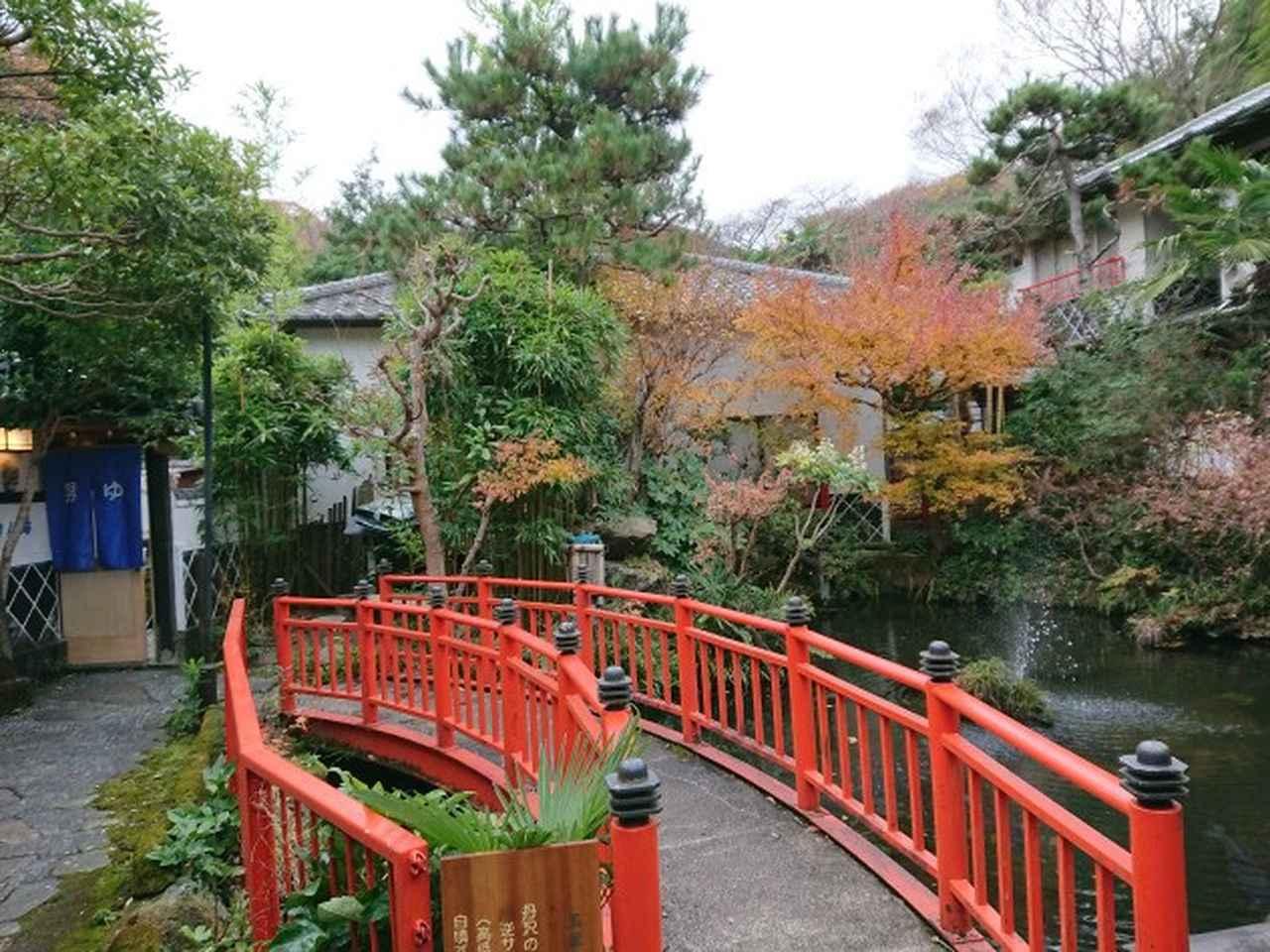 画像12: 12月13日に岡田ガイドのコースで 鐘ヶ岳 ツアーに行ってきました!