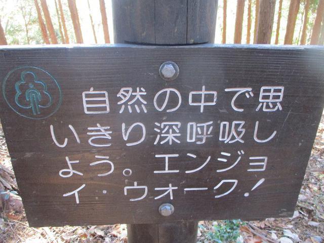 画像5: 12月20日に栃木と茨城の県境の山 「仏頂山から高峰」 へ行って来ました♪
