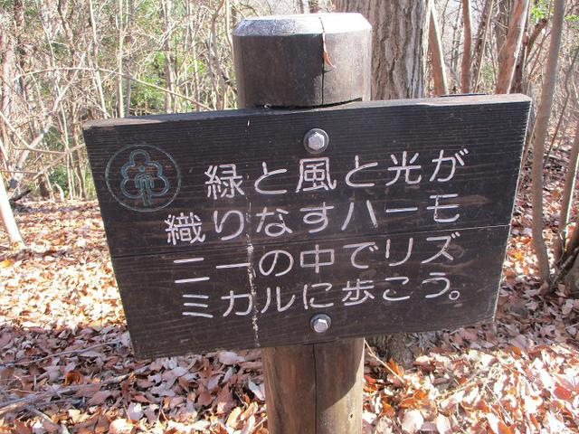 画像9: 12月20日に栃木と茨城の県境の山 「仏頂山から高峰」 へ行って来ました♪