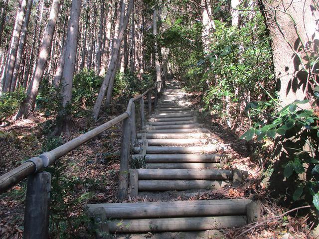 画像4: 12月20日に栃木と茨城の県境の山 「仏頂山から高峰」 へ行って来ました♪