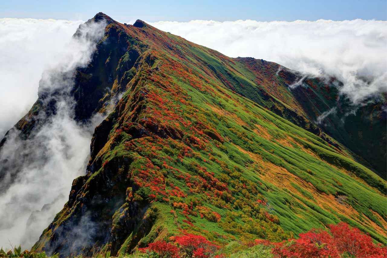 画像: 谷川岳