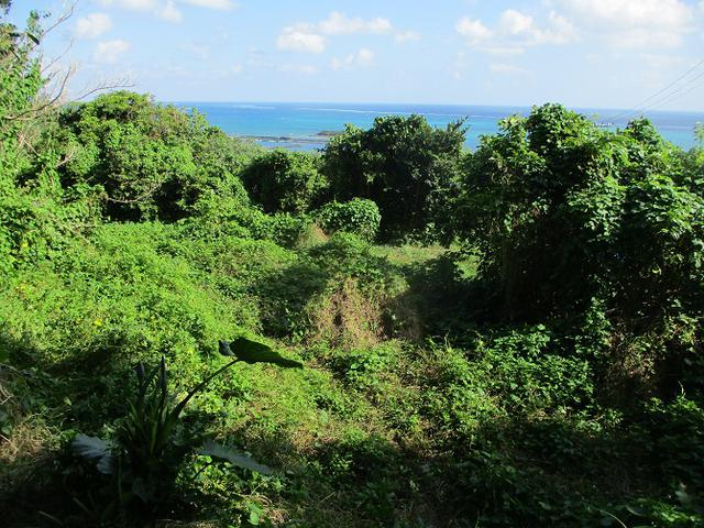 画像11: 1月の山旅会 「沖縄グスク巡り・伊江島城山・名護岳」 ツアーの下見にいってきました!