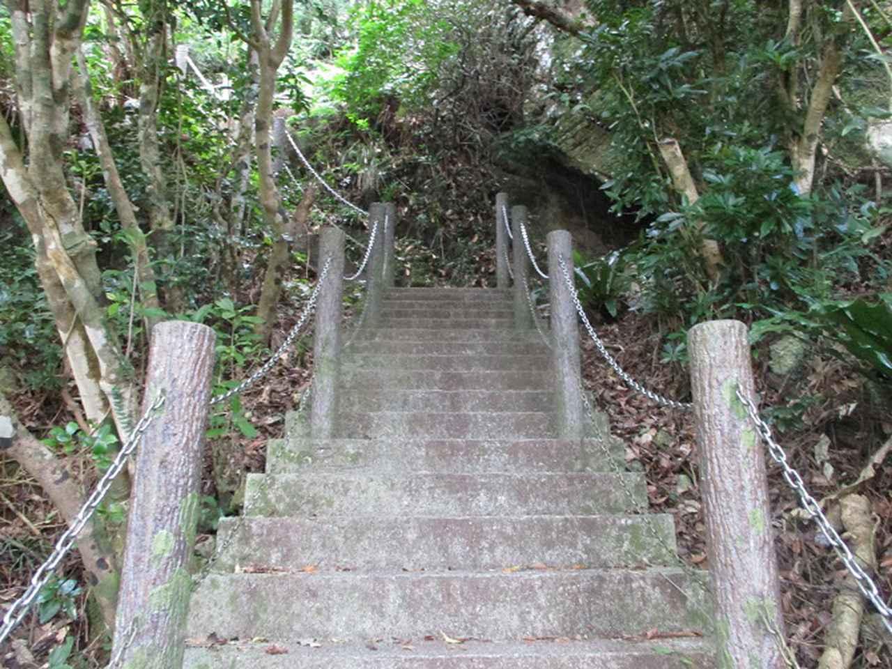 画像6: 1月の山旅会 「沖縄 グスク巡り・伊江島城山・名護岳」 ツアーの下見に行ってきました!