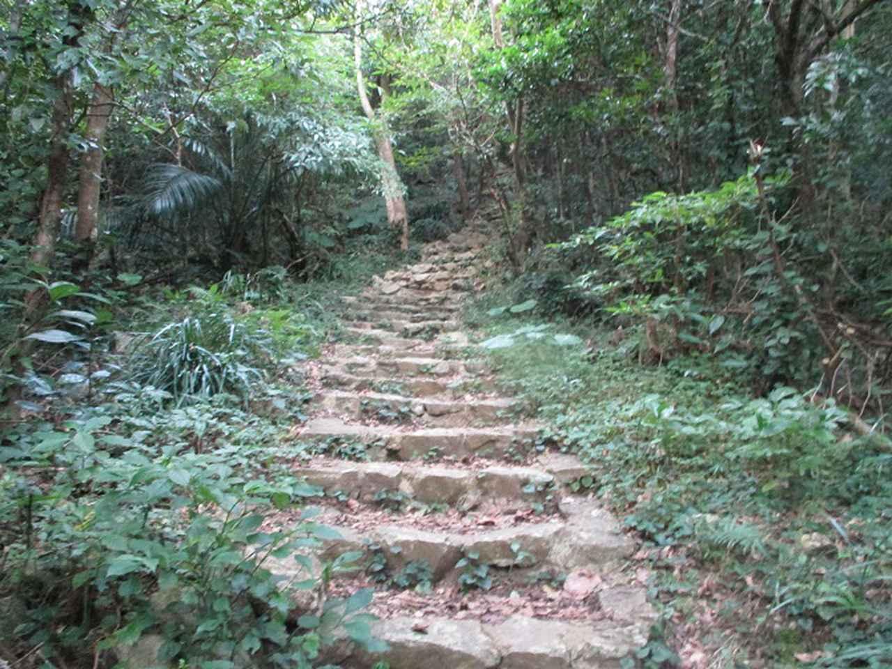 画像6: 1月の山旅会 「沖縄グスク巡り・伊江島城山・名護岳」 ツアーの下見に行ってきました!