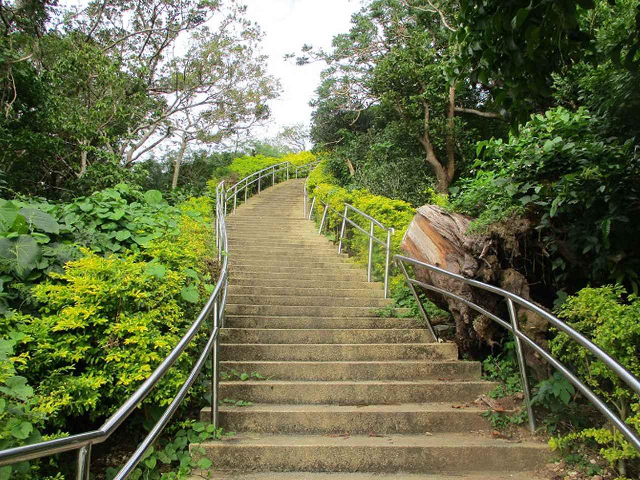 画像4: 1月の山旅会 「沖縄 グスク巡り・伊江島城山・名護岳」 ツアーの下見に行ってきました!