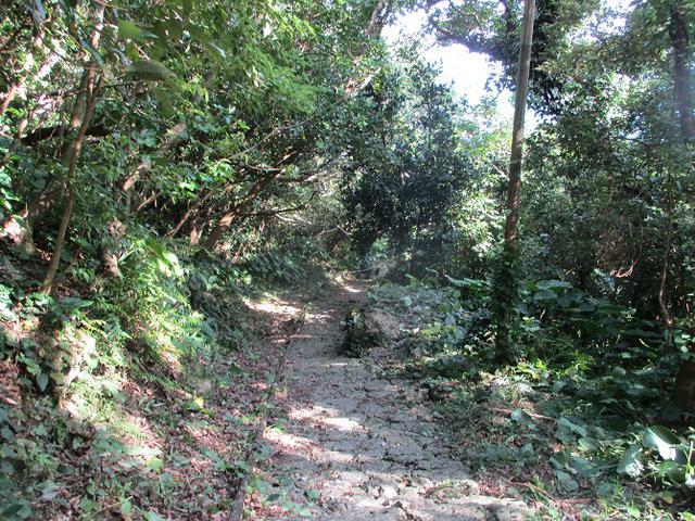 画像8: 1月の山旅会 「沖縄グスク巡り・伊江島城山・名護岳」 ツアーの下見にいってきました!