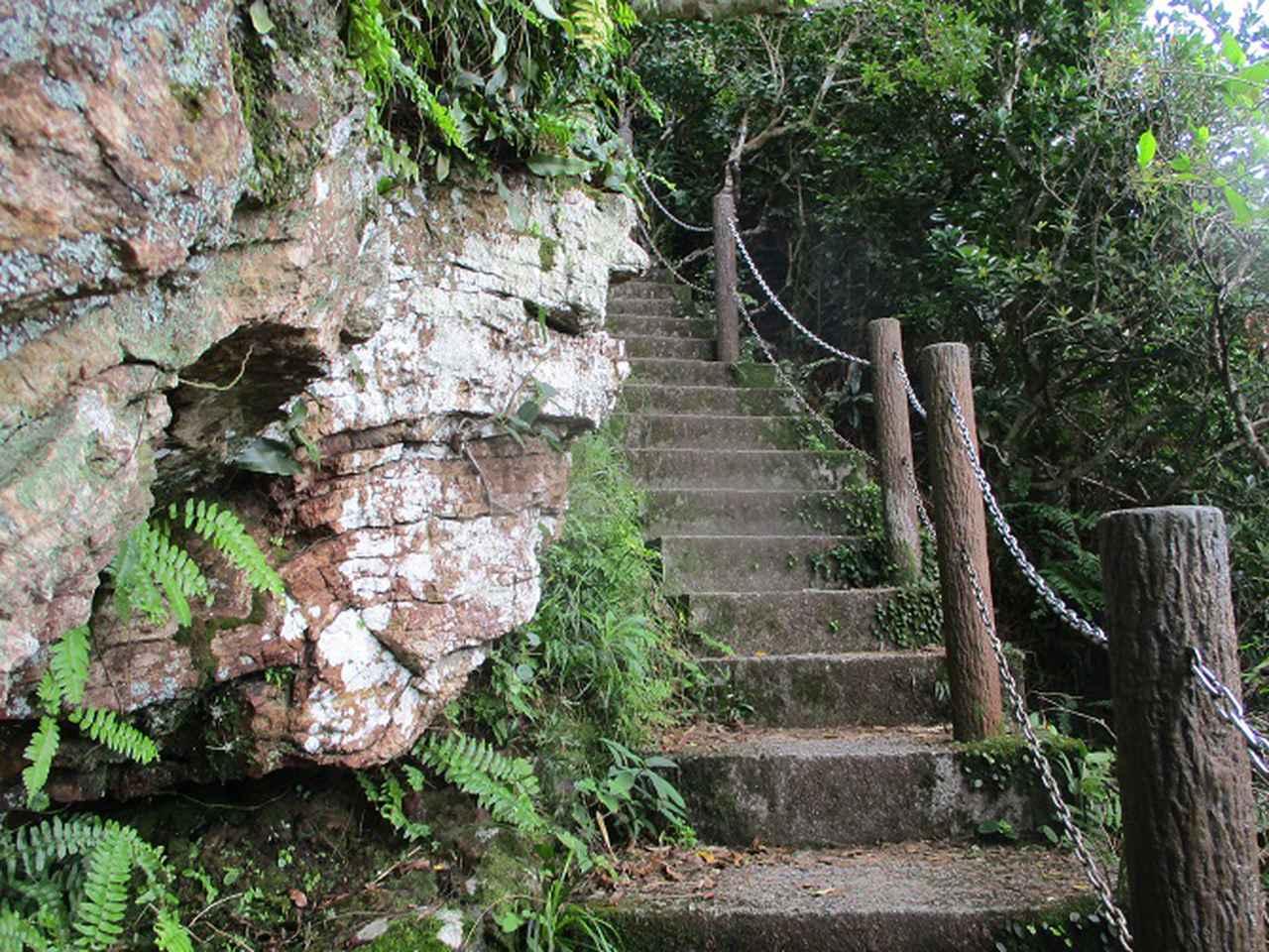 画像7: 1月の山旅会 「沖縄 グスク巡り・伊江島城山・名護岳」 ツアーの下見に行ってきました!