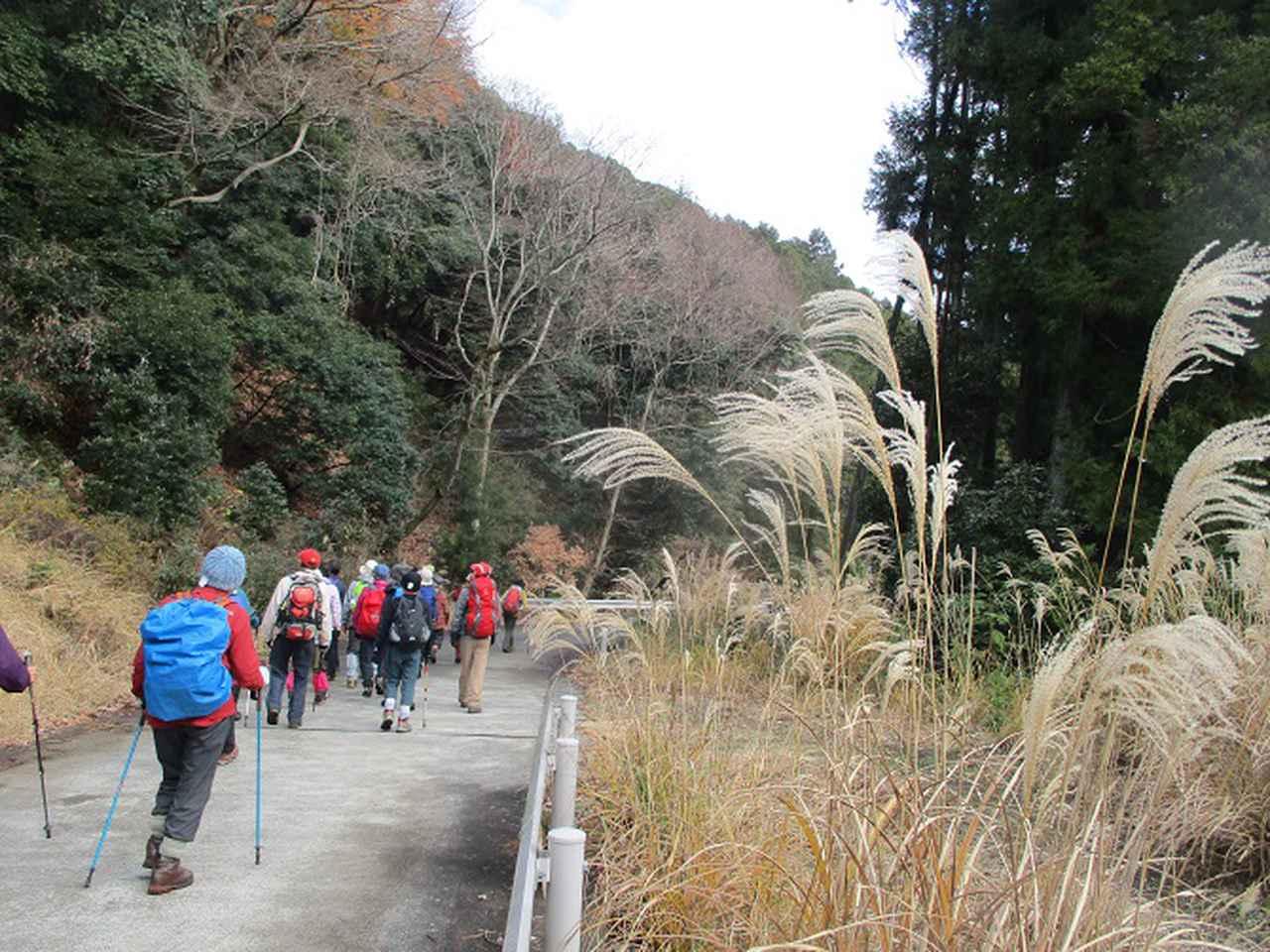 画像10: 12月23日に山旅会 鐘ヶ岳 の2回目のツアーに行ってきました!