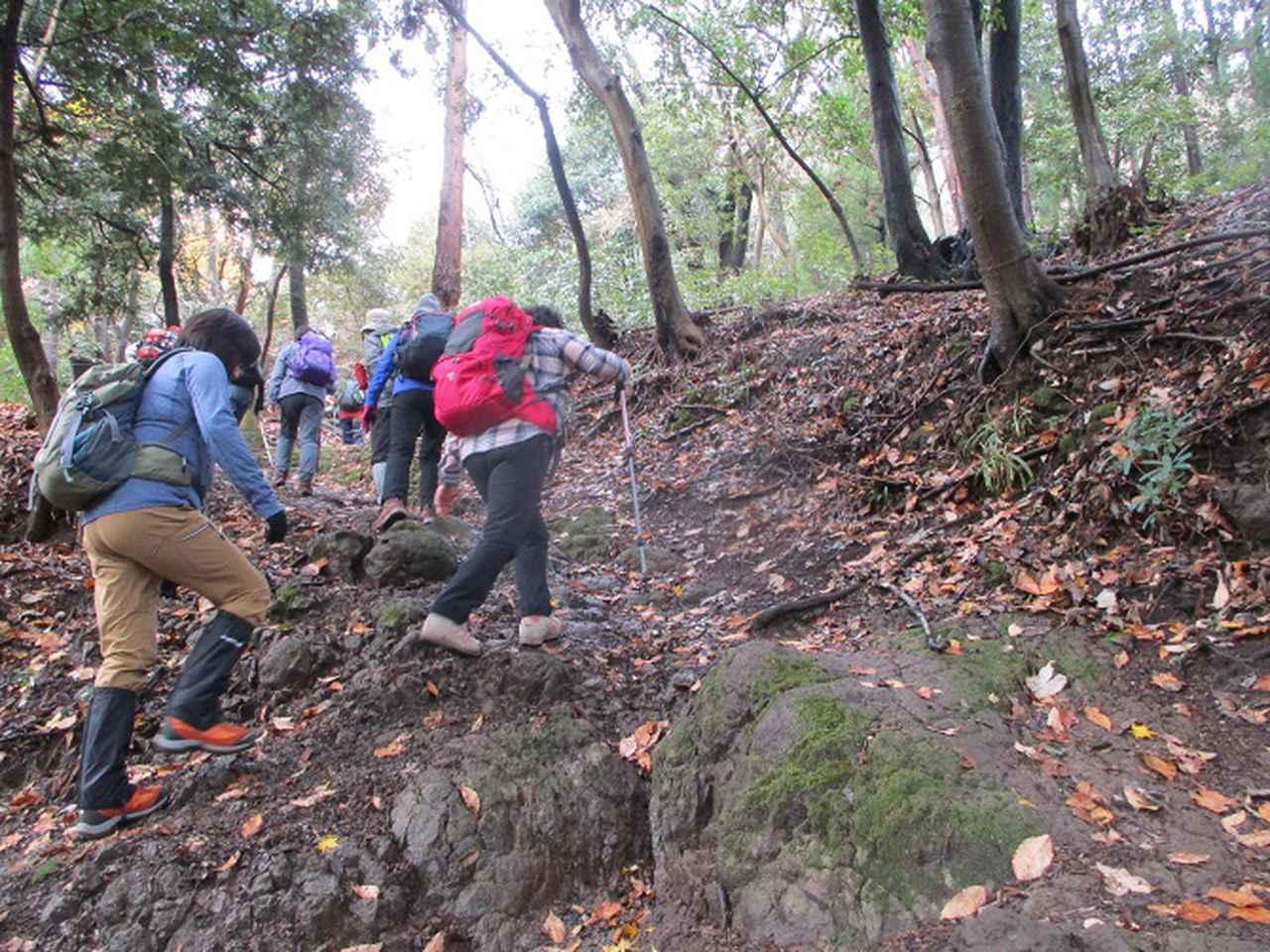 画像2: 12月23日に山旅会 鐘ヶ岳 の2回目のツアーに行ってきました!