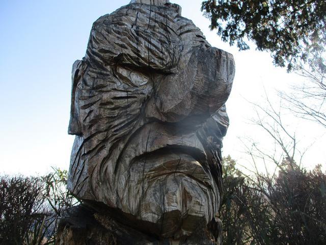 画像5: 12月29日と30日に山旅会現地ツアー 「城山から高尾山」 に行ってきました!